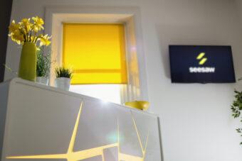 See Saw Creative | Digital Marketing + Branding Agency | Website + Graphic Design